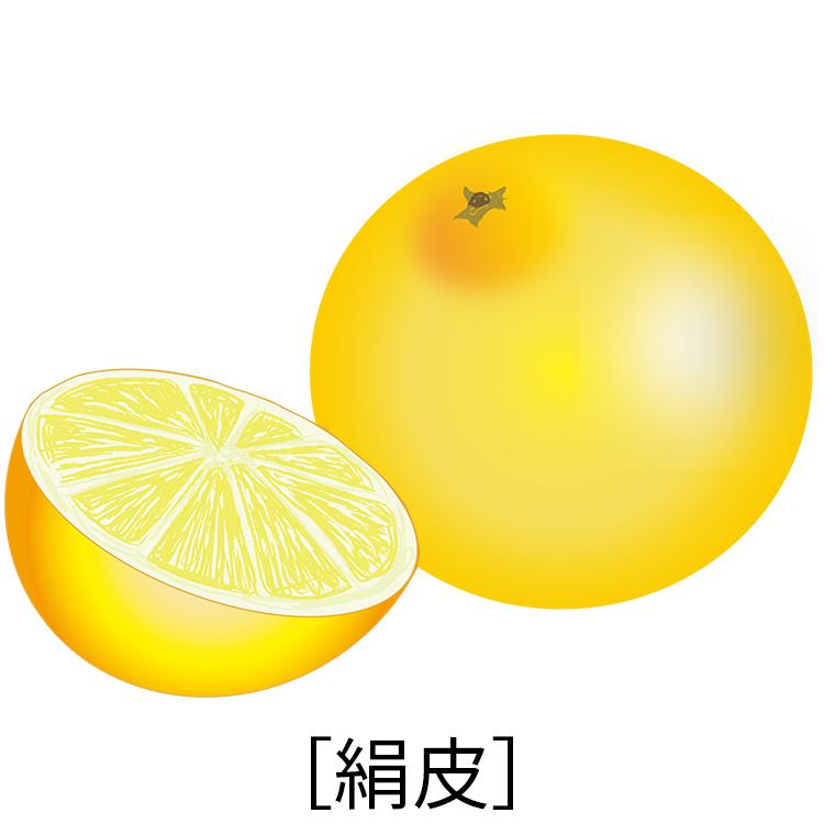 グレープフルーツ 禁忌