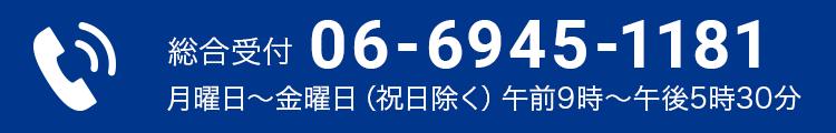 0669451181